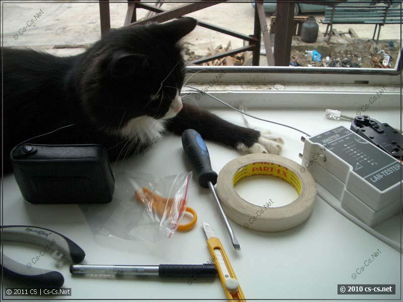 Админская Кошка следит за инструментом для СКС