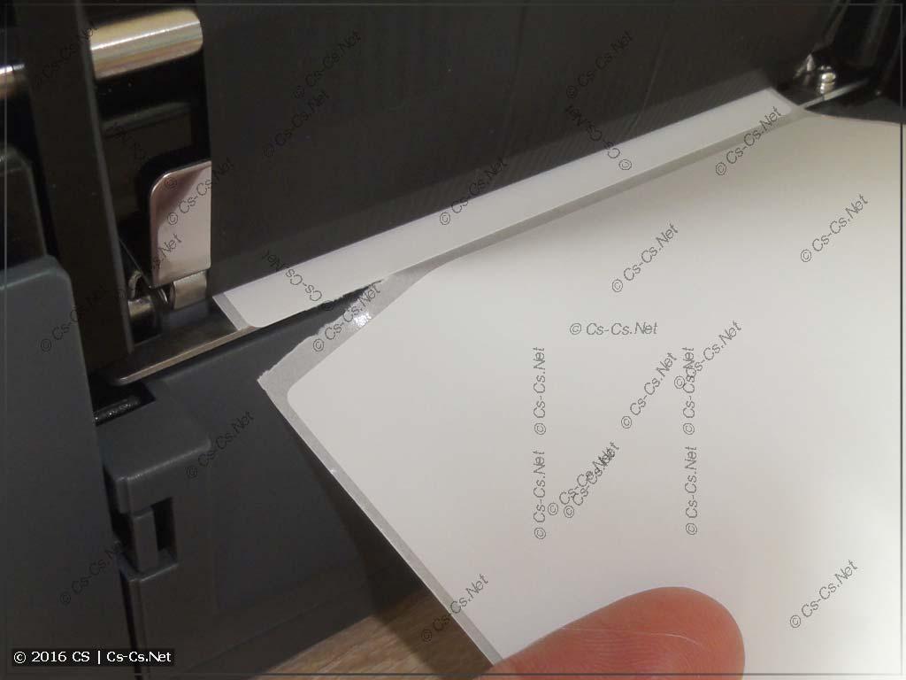 Отрыв этикетки с бумажной основой